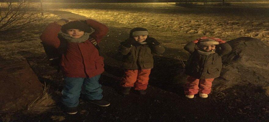 Blog Islande - Minis Puffins sous la tempete